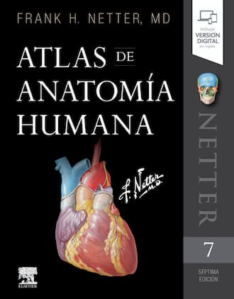 Comprar atlas anatomia netter