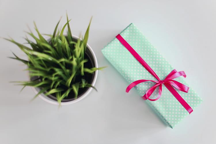 regalos de navidad para fisioterapeutas
